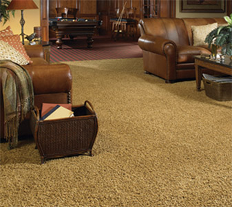Working with the experts at Country Carpet & Flooring makes choosing your next carpet a breeze!  Come check out our selection of Karastan carpet today!